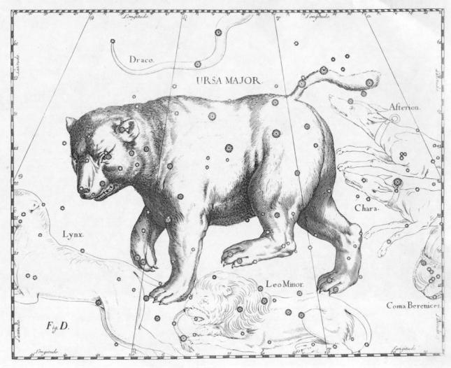 Ursa Major Hevelius